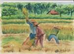 farmers 1, watercolor A3 2013