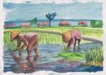 farmers 2, watercolor A3 2013