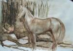 horse 1, watercolor A3 2013